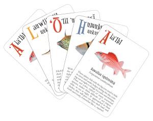 alohacards